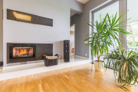 Quels sont les avantages des différents combustibles pour cheminées ?